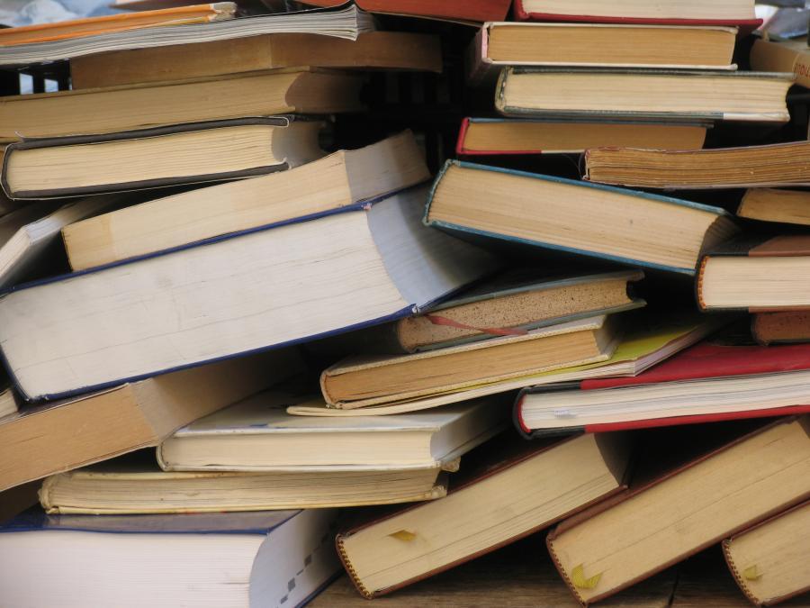 Læsetips og inspiration