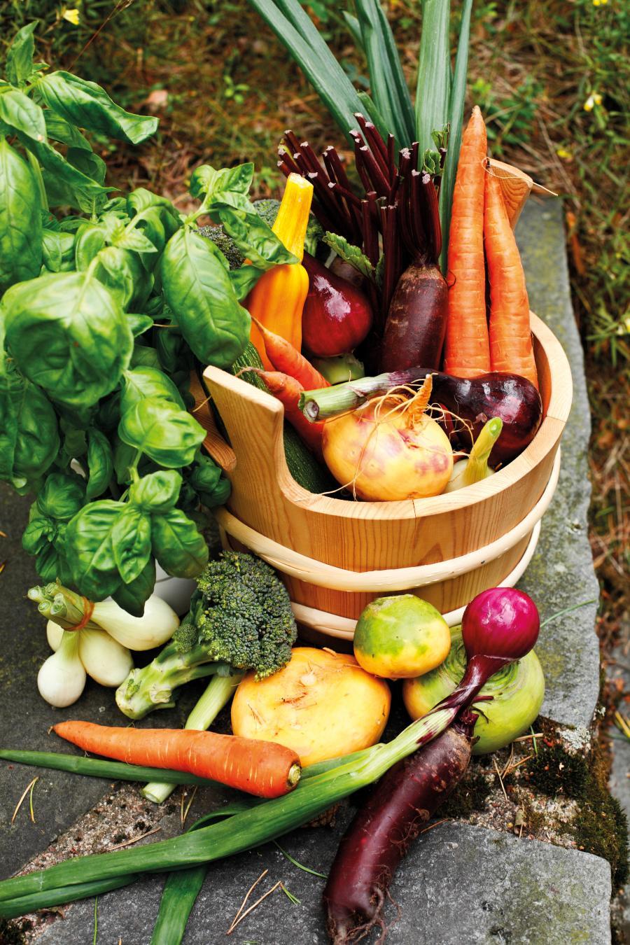 Plantebaseret kost